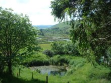 17 - Ettrick Marshes & High Conifer Forest Route