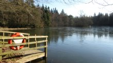 7  - The Lochs Walk, Bowhill Estate