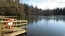 7  - The Lochs Walk, Bowhill Estate