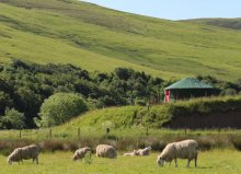 Ettrick Valley Yurts