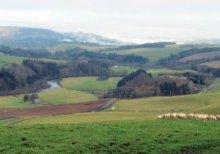 3 - Ettrickbridge Circular via Howford Hill and Helmburn Hill